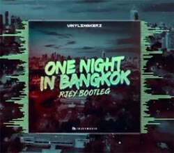 Vinylshakerz - One Night In Bangkok (RJEY Bootleg)