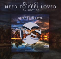 Reflekt - Need To Feel Loved (LDK Bootleg)