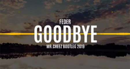 Feder - Goodbye (Mr.Cheez Bootleg)